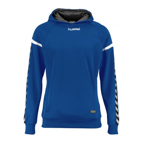 Hummel Herren Kapuzenpullover Authentic Charge Poly Hoodie 33403