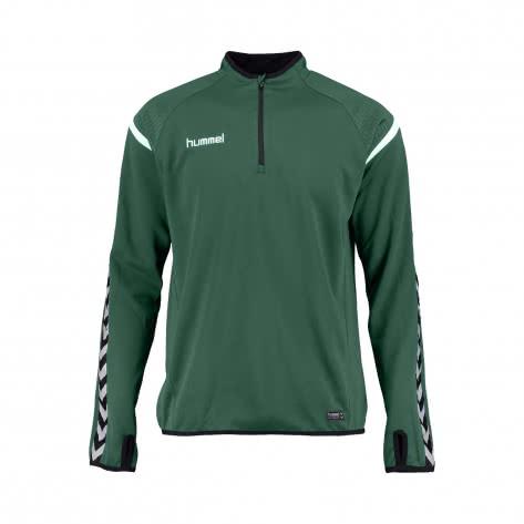 Hummel Herren Sweatshirt Authentic Charge Training Sweat 33406