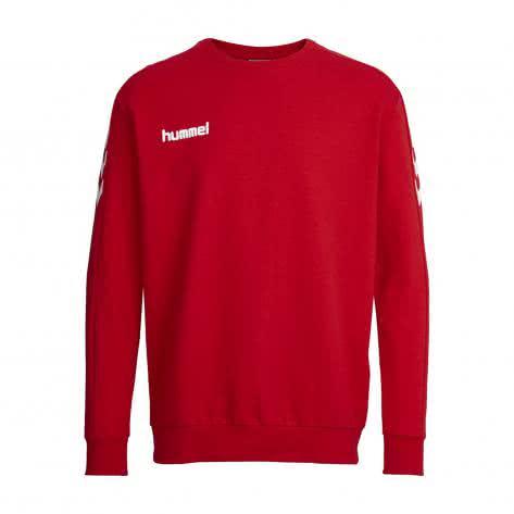 Hummel Kinder Sweatshirt Core Cotton Sweat 36894