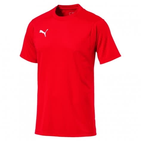 Puma Herren Trainingstrikot Liga Training Jersey 655308