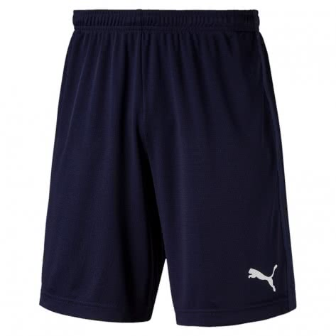 Puma Herren Short LIGA Training Shorts Core 655664