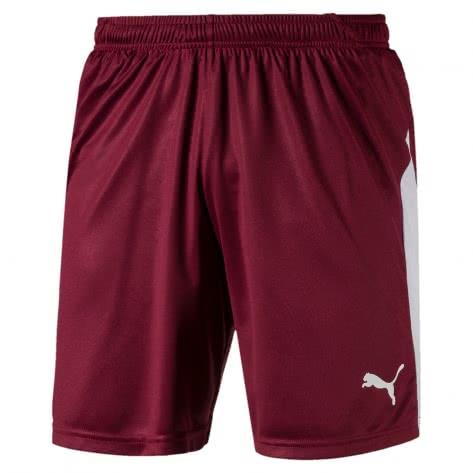 Puma Herren Short Liga Shorts 703431