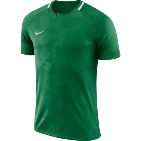 Nike Herren Trikot Dry Challenge II 893964-341 XL Pine Green/White | XL
