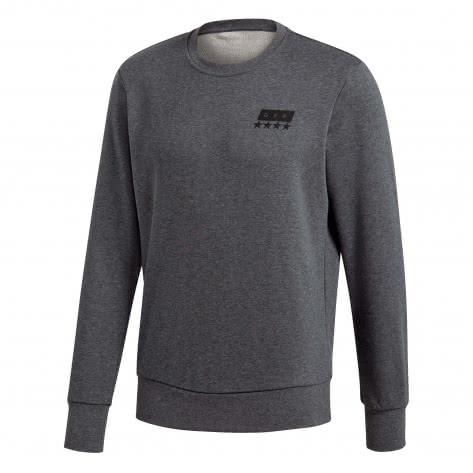 adidas Herren Pullover DFB Street Graphic Crew Sweat CF2476 XS Dark Grey HeatherBlack | XS |