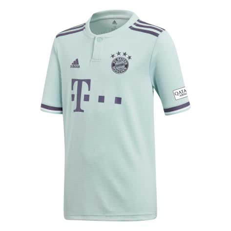 adidas Herren FC Bayern München Away Trikot 2018/19 CF5410 XS ash green s18/trace purple s18/white | XS