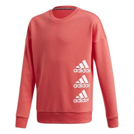 adidas Mädchen Pullover Must Have Crew FL1799 164 Core Pink/White | 164