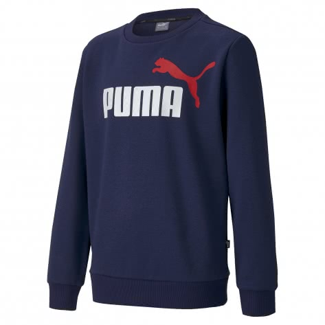 Puma Jungen Pullover ESS 2 Col Crew Sweat FL B 583231