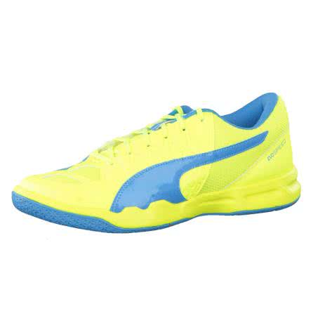 Puma Trainingsschuhe evoSPEED Indoor 5.4 103335