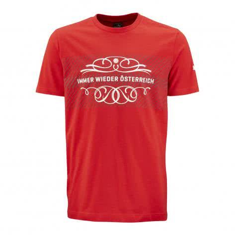 Puma Herren T-Shirt ÖFB Tee EM 2016 750555