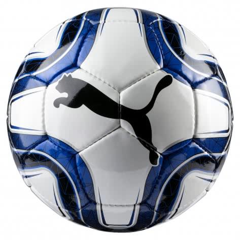 Puma Fussball FINAL 5 HS Trainer 082911