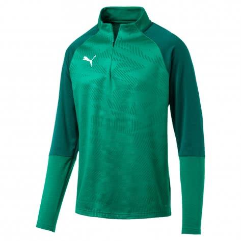 Puma Herren Pullover Cup Training 1/4 Zip Top Core 656018