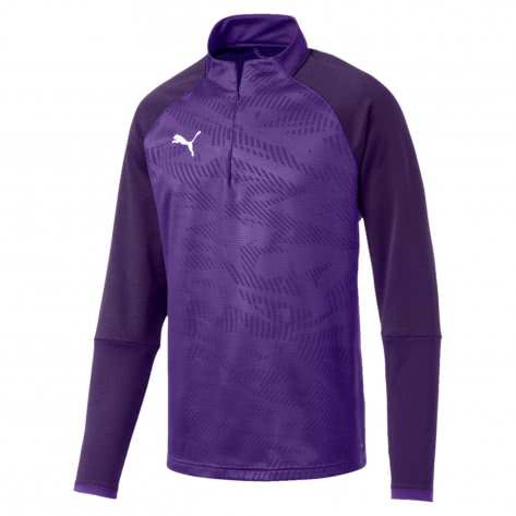 Puma Herren Pullover Cup Training 1/4 Zip Top Core 656018