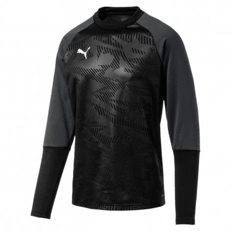 Puma Herren Pullover Cup Training Sweat Core 656021