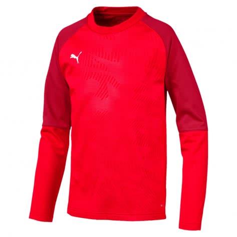 Puma Kinder Pullover Cup Training Sweat Core Jr 656022