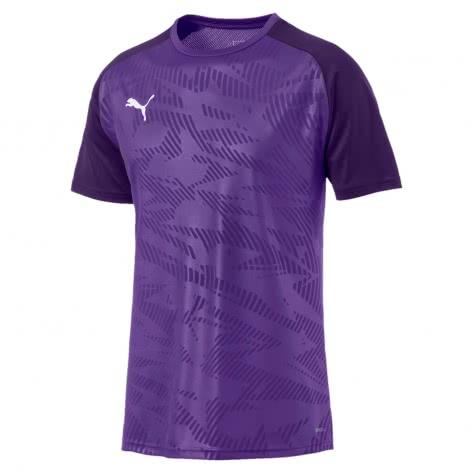 Puma Herren Trainingstrikot Cup Training Jersey Core 656027