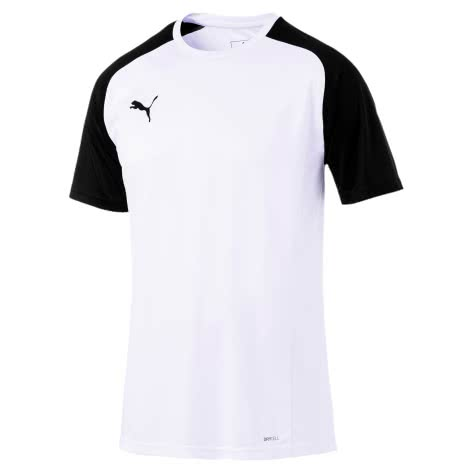 Puma Herren T-Shirt Cup Sideline Tee Core 656051