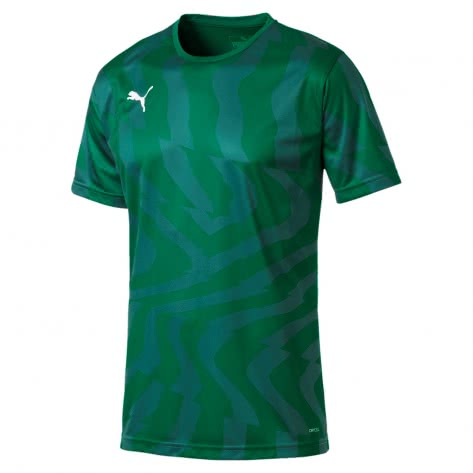 Puma Herren Trikot Cup Jersey Core 703775