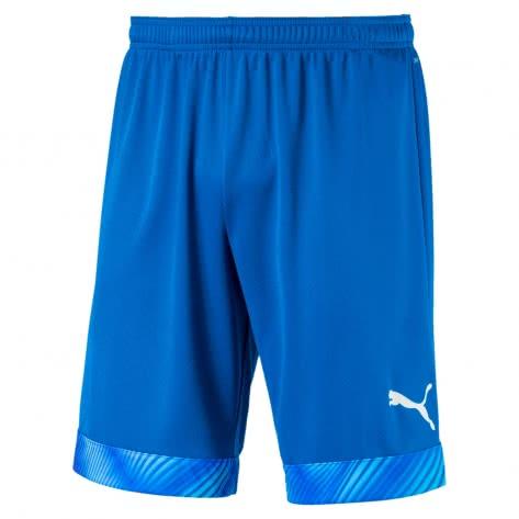 Puma Herren Short Cup Shorts 704034