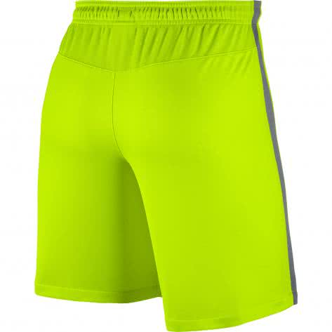 Nike Herren Short Squad Football Short 807670