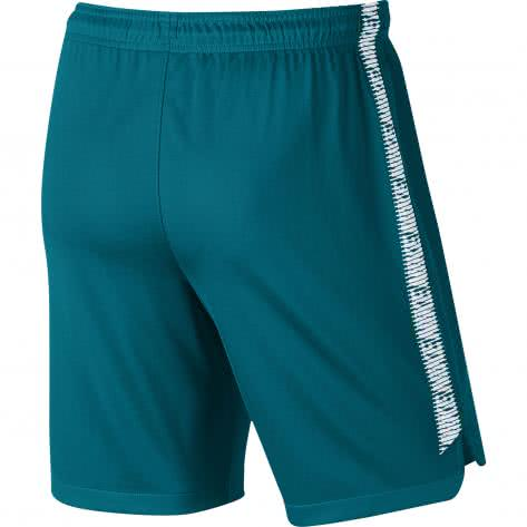 Nike Herren Short Dry Squad Football Shorts 859908